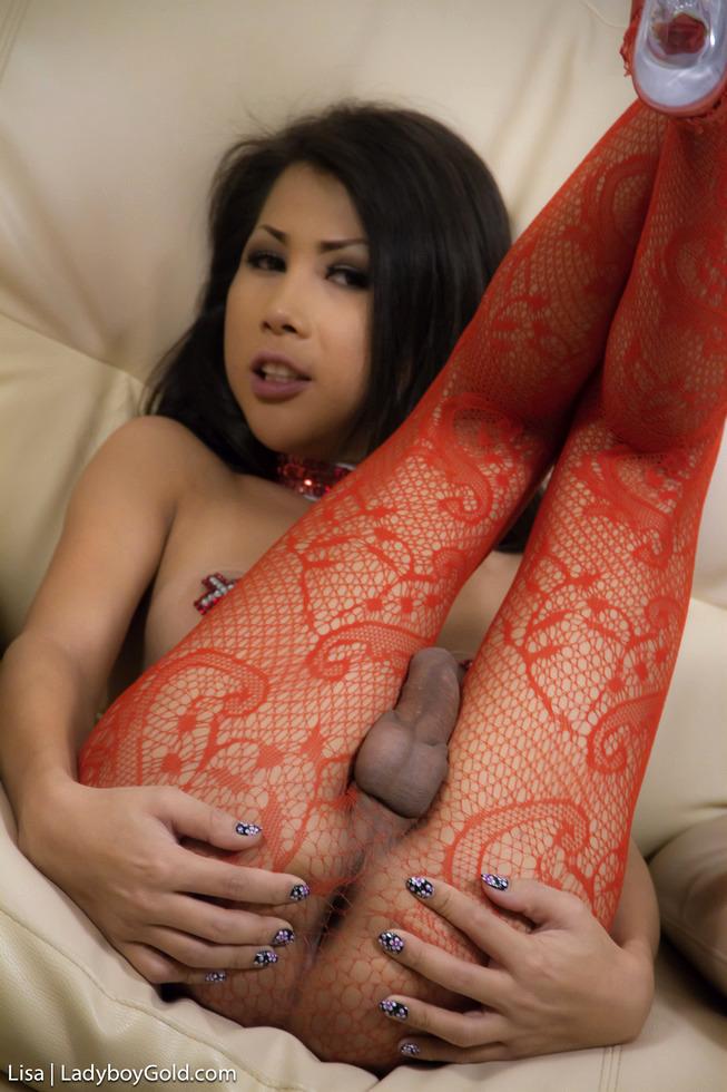 Pattaya Shemale Lisa - Lisa Showgirl Prostitute
