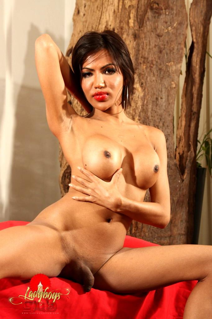 Splendid Asian Shemale With Meaty Cock Has Sticky Jizz Shot And Creampie