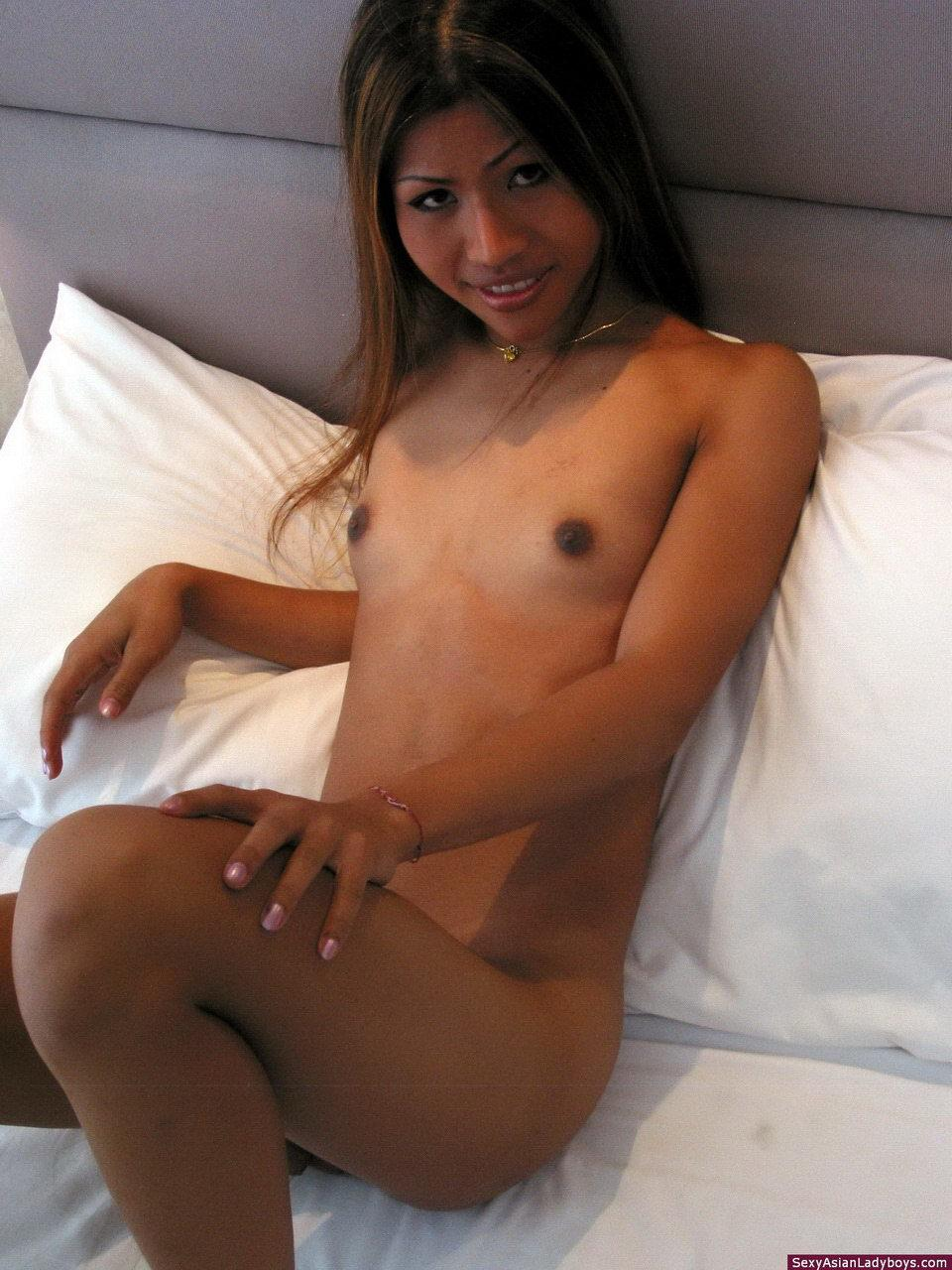 In T-Girl Gets Her Ass Ruined
