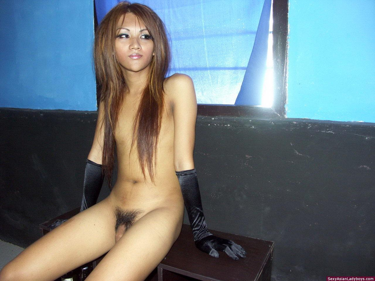 Thai Shemale Getting Cock Sucked