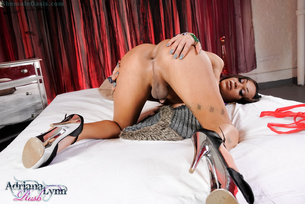Tgirl Adriana Lynn Rush - Red Inviting Bed