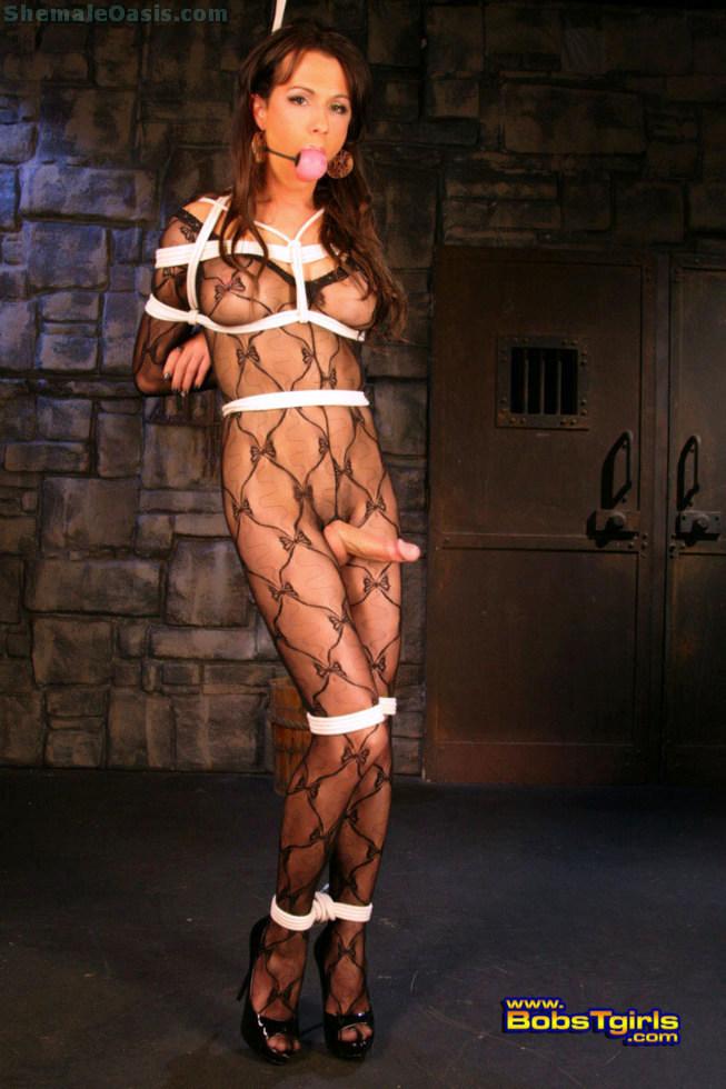 Transexual Danika Dreamz - Danika Dreamz No Escape