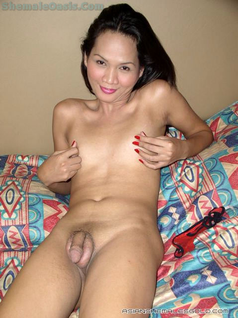 Petite Titted Thai Transexual
