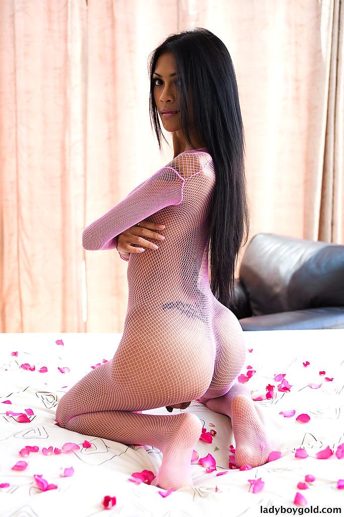 Gorgeous T-Girl Rose Masturbates Tool In Fishnet Body Stocking