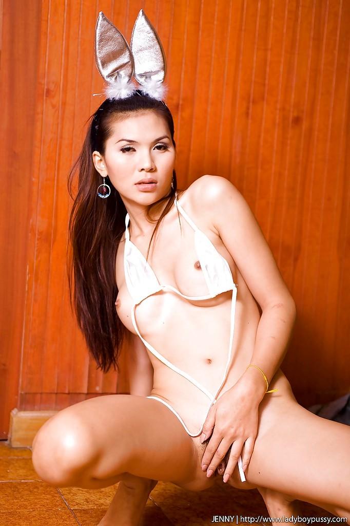 Busty Brunette Asian Tgirl Jenny Posing In Her Bunny Costume
