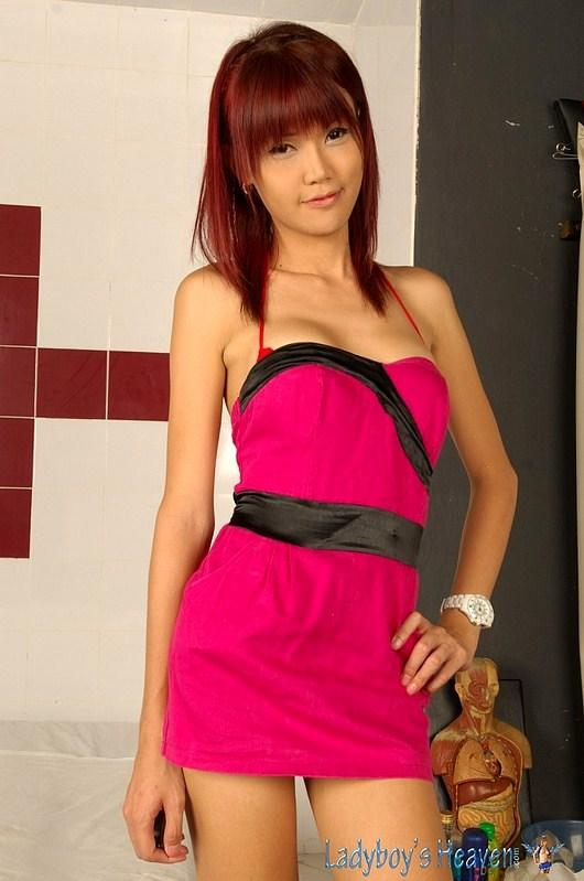 Nice Thai Transexual Kitty Striptease